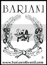 bariani logo outline 2